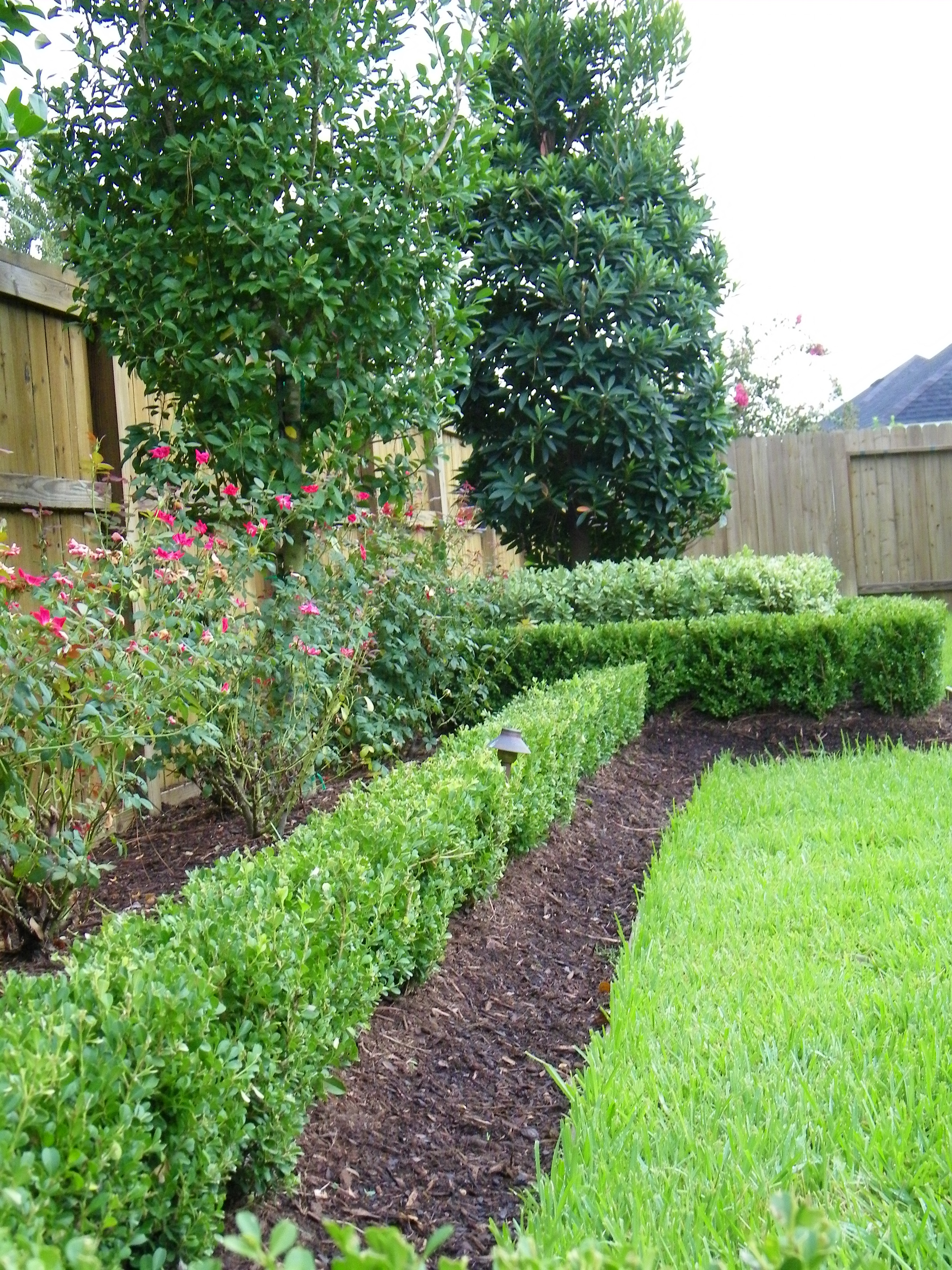 landscaping_17